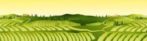 agricultural hillside landscape graphic