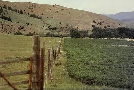 fence running through pasture land